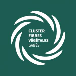 Cluster-fibre-vegetales-gabes