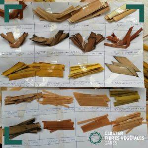 Formation en teinture naturelle de la fibre de palmier (12)