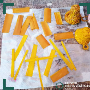 Formation en teinture naturelle de la fibre de palmier (5)